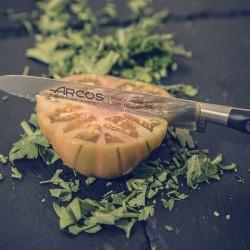 Нож для томатов «Ривьера» L=23/13 ( арт.произв.: 232000 )