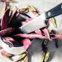 Нож кухонный Arcos Clasica L=22.5/12 ( арт.произв.: 255800 )