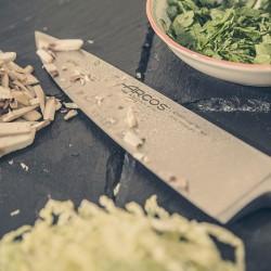 Нож поварской Clasica L=27.8/16 ( арт.произв.: 255000 )