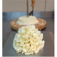 Жироль для сыра APS 22см (+колпак)